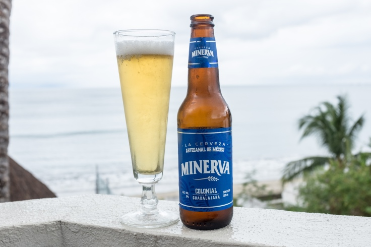 Minerva-1